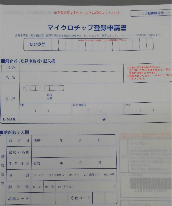 KIMG1484.JPG